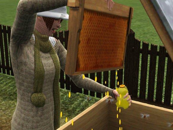 Beekeeping-2